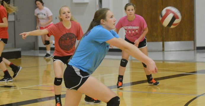 kingman volleyball preview