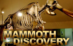 Mammoth Discovery Made in Cunningham