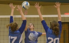 Lady Eagles Split Triangular; Sub State Next