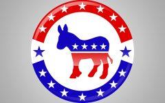 Democrats Plan Online Convention