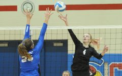 Lady Eagles Season Ends at Sub State